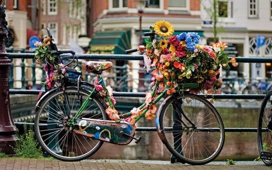 www.holland.com