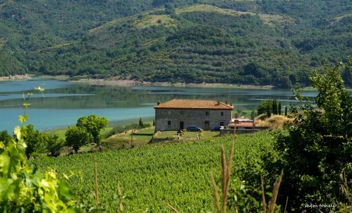 Lago di Corbara_1