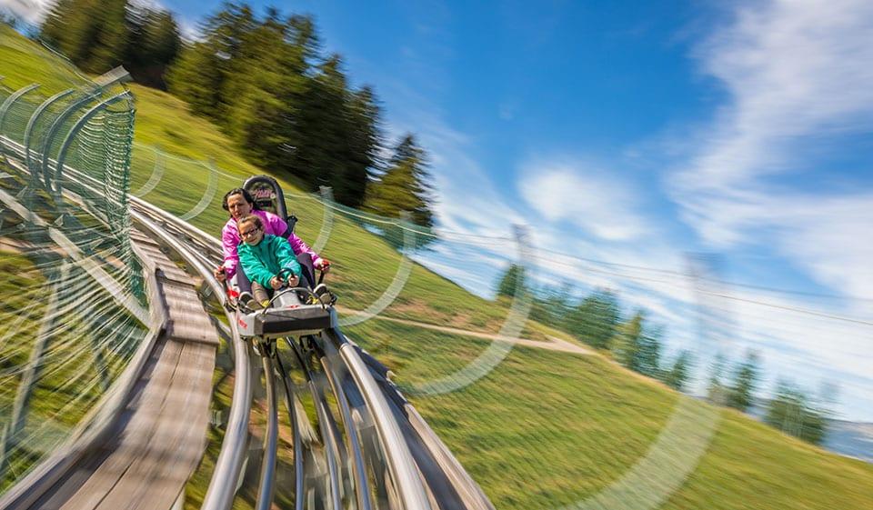 מגלשת הרים בשוויץ