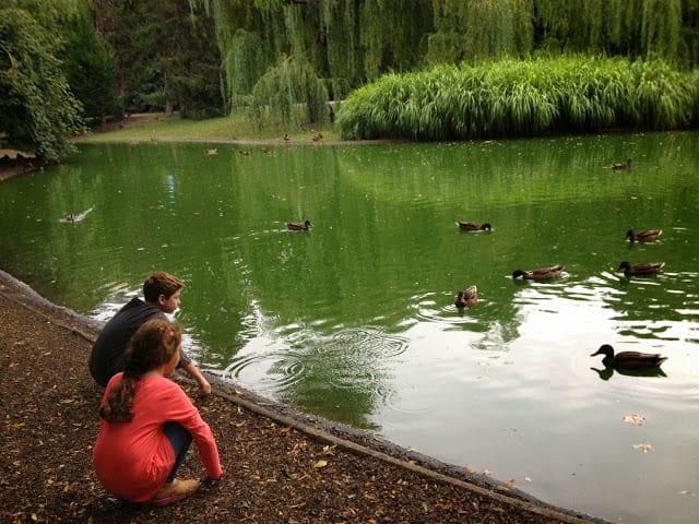 מדריך לוינה עם ילדים