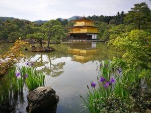 לבד ליפן צילום: ענת אור מגל