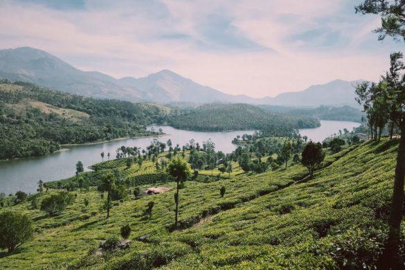 טיול נשים לדרום הודו