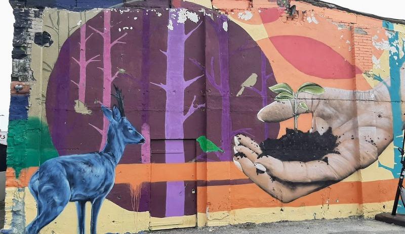 טיול בעיר טאלין אסטוניה