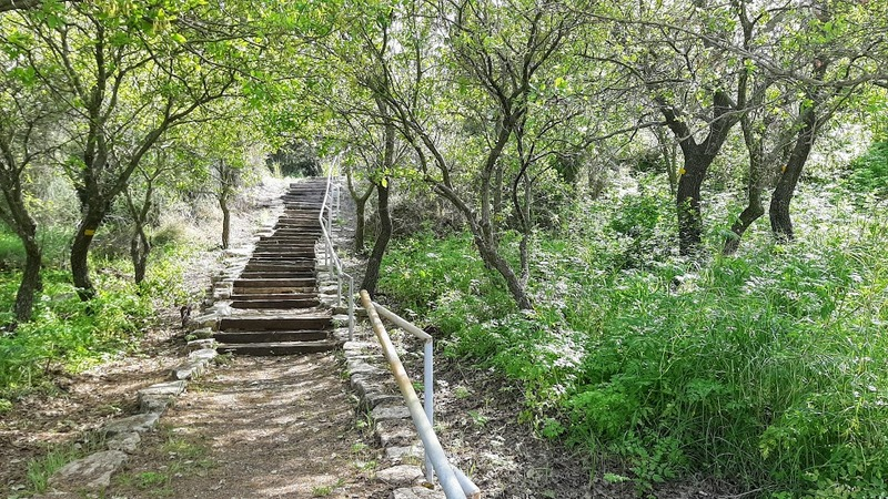 סיור בעמק יזרעאל