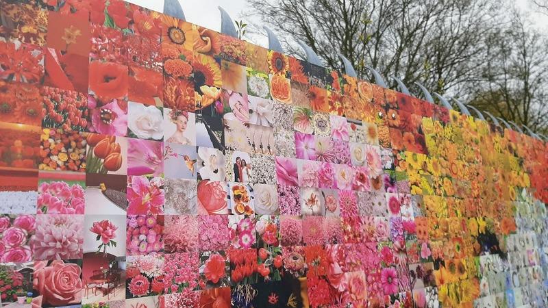 כפר הפרחים אלסמיר הולנד מוזיאון הפרחים